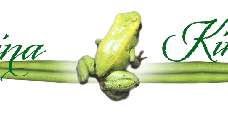 Zaina-Kinesiology-logo-copy-2-300x62.png